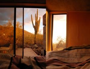 David Frazee Philadelphia, PA, US tiny desert9